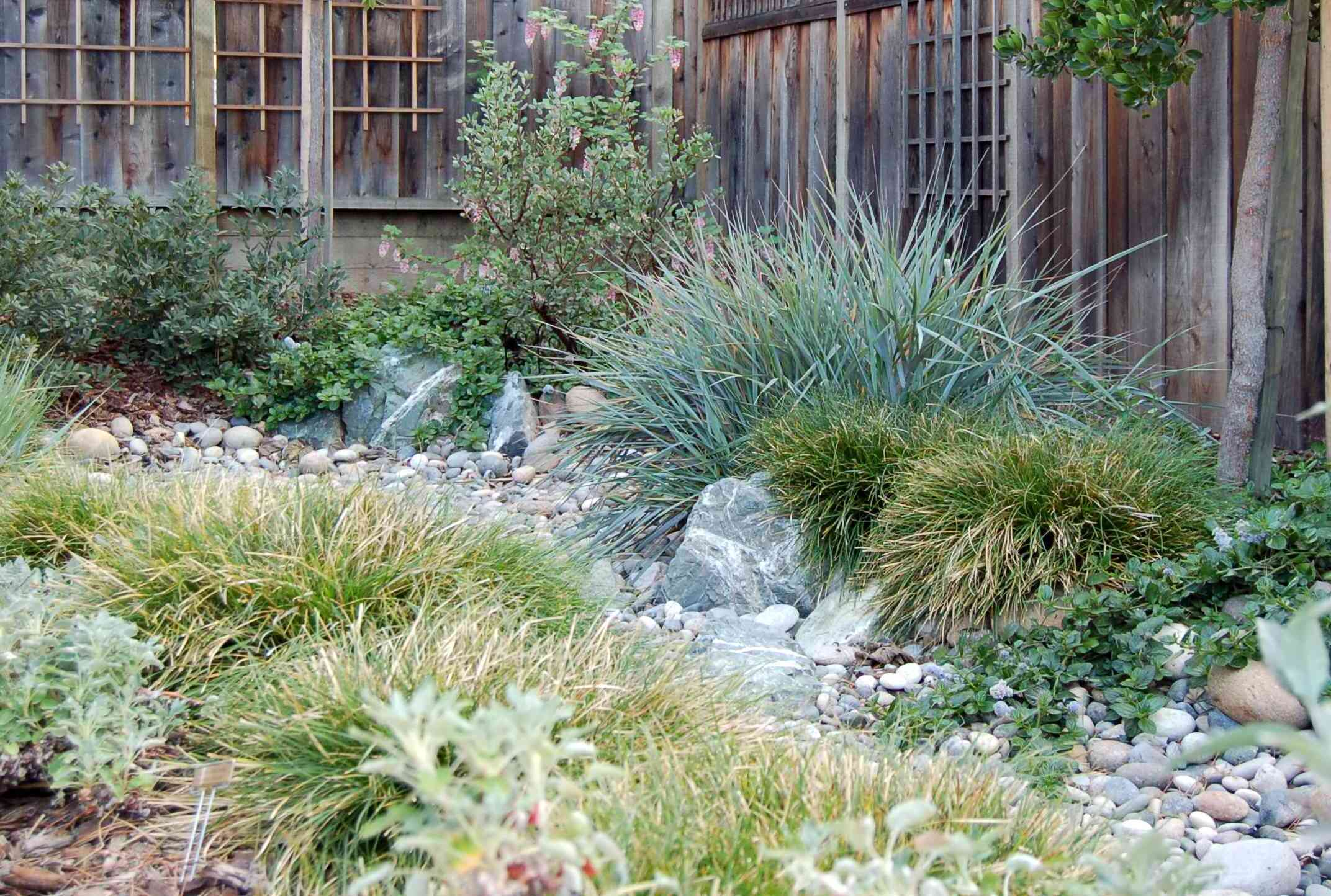 Kelly marshall garden design specializing in beautiful for Native garden designs