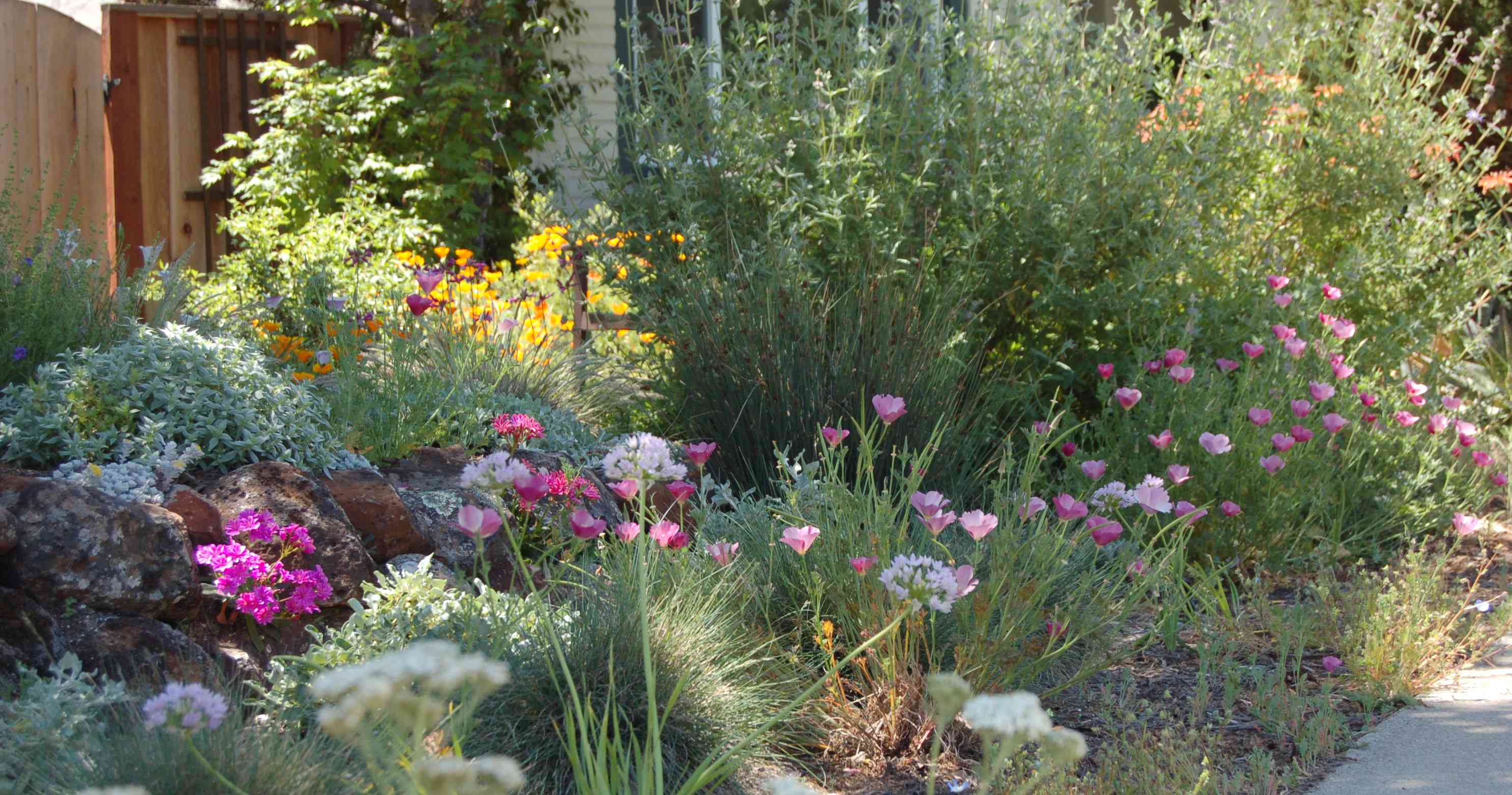 Kelly marshall garden design specializing in beautiful for Native plant garden designs